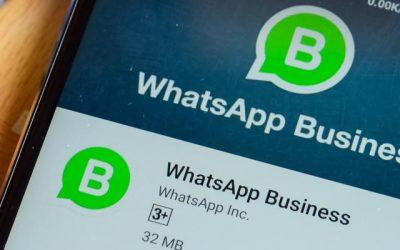 WhatsApp pour entreprise: Comment tirer profit de la plateforme ?